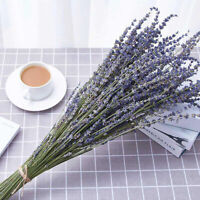 100Pcs Beautiful Natural Lavender Bouquet Dried Flowers Immortal Flower Decor