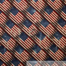 BonEful Fabric Cotton Quilt Blue Red Country America*n Flag Star Stripe US SCRAP