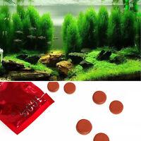 36X Wasserpflanze Wurzeldünger Aquariumbehälter Aquatic Zylinde Neu