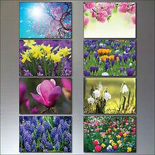 Fioritura primaverile lampadine e fiori Calamite da frigo set di 8