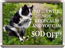 BORDER COLLIE FRIDGE MAGNET (REF JGBCOL1) ANIMAL DOG PUPPY FUNNY