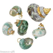 Shell Charm Pendants Conch Sea Snail Random 5PCs DIY Jewellery Crafts