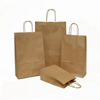 Luxury Brown Twisted Handle Kraft Paper Gift Carrier Bags 23cm x 32cm x10cm