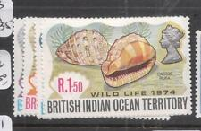 British Indian Ocean Territory Shells SC 59-62 MOG (11dhy)