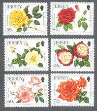 Jersey Roses 2010 set mnh - Flowers
