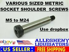 Metric Alloy Steel Hex Socket Drive Shoulder Screw Bolts 12.9 Grade FREE SHIP NH