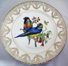 "Parrots Parrakeets Large Decorative 10.6"" Bone China Plate"