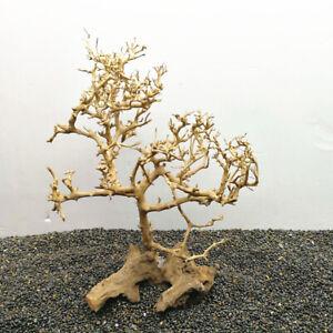 Driftwood Tree Aquarium Moss Fish Shrimp Tank Ornaments Landscaping Bonsai Decor