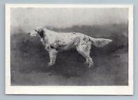1958 DOG ENGLISH SETTER LAVERAC by Stepanov Art Vintage Postcard