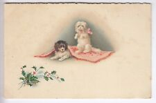 CPA  ANIMAL FANTAISIE - CHIEN DOG BICHON MALTAIS CAVALIER KING CHARLES 1910 ~C88