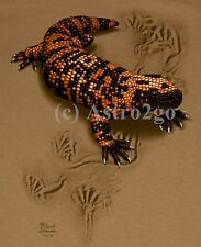 GILA MONSTER TRAX--Reptile Lizard Desert Science Nature T shirt Small only NEW!