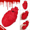 Novelty Silicone Stress Ball Scary Organ Heart Squeeze Toy Stress Reliever Toys
