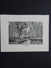 Print, Engraving, Art Book, c. 1888 #25 An Autumn Landscape