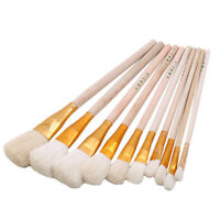 10Pcs Artist Fan Paint Brush Set Long Handle Acrylic Oil Painting Brushes CP