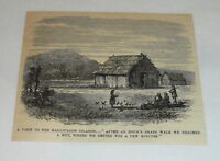 1878 small magazine engraving ~ FARM LIFE IN THE GALLIPAGOS