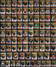 2019 Topps WWE Raw Bronze Parallel Wrestling Cards Complete Your Set You Pick