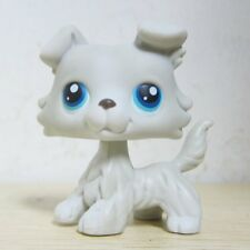 Littlest Pet Shop Animal LPS Loose Toy #363 Chien Colley Collie Dog Blue Eyes H1