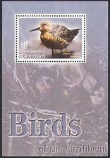 Dominica 2005 Rosso Nodo/MARE Birds/NATURA/animali selvatici 1 V (M/S n40851)