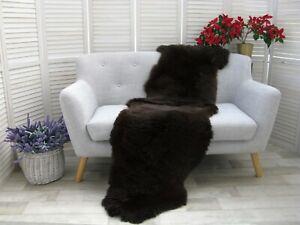 Real BRITISH DOUBLE Sheepskin Rug Hide Dark Brown Soft Sofa FLOOR Bed Cover D34