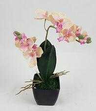 TOP Orchidee Bonsai Rosa Kunstblume schwarzen Topf Pflanze 1 Zweige Deko