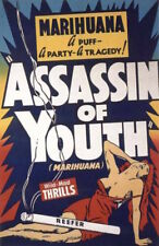 ASSASSIN OF YOUTH - MARIJUANA POSTER 24x36 - WEED POT SMOKING 52466