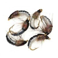 6pcs Realistic Nymph Scud Fly #12 For Trout Fishing Nymphing Artificial Insect