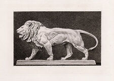"Extraordinary 1800s Antoine-Louis BARYE Etching ""Le Lion qui Marche"" FRAMED COA"