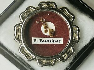 Reliquary Relic 1st Class St Faustina Kowalska No COA Authentic seal Intact RARE