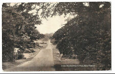 Bournemouth Rd, New Forest, PPC Unposted Sepio no 3435 J Salmon