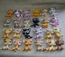 24pcs lots lps Rare Littlest Pet Shop short hair cat collect animal Figure toys