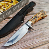 Survival Military Bowie Camp Fixed Blade Camping Knives Tactical Hunting Knife