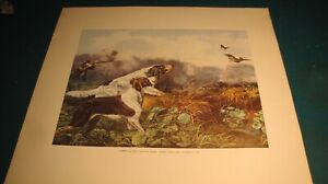 "Currier & Ives --Hunting Scene -Stone Print, Yale University, USA 18 by 21"" dogs"