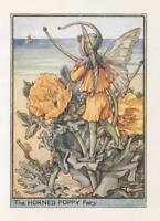 Flower Fairies: The Horned Poppy Fairy Vintage Print c1930 Cicely Mary Barker