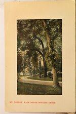 Virginia VA Mt Vernon Bowling Green Walk Postcard Old Vintage Card View Standard