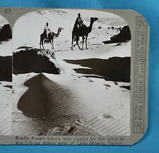 Stereoview Photo Africa Sandy Libyan Desert West Of Lake Moeris Fayum Realistic