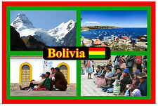 BOLIVIA, SOUTH AMERICA - SOUVENIR NOVELTY FRIDGE MAGNET - NEW - GIFT / XMAS