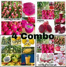 Super Combo Pack 4 Variety Mixed Bonsai Dragon Pitaya Fruits Seeds 20 Pcs Packet