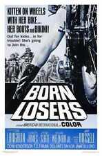 Born Losers Poster 01 Metal Sign A4 12x8 Aluminium