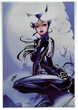Catwoman Comic Size Exclusive Metal Print by Paul Green Grimm!