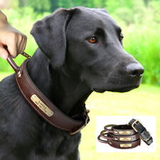Soft Leather Personalized Dog Collar with Strong Contronl Handle for K9 Training