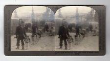 A DOG TEAM, ARCTIC CITY, ALASKA: Stereoscopic photograph (C28667)