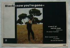 BLACK - NOW YOU'RE GONE - 1988 UK magazine ad COLIN VEARNCOMBE -  21.3 x 14.8cm