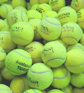 4 6 8 or 10 Used Tennis Balls. Great For Dogs. All Branded EXCELLENT CONDITION