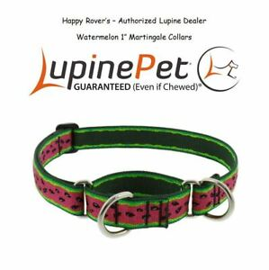 "Lupine Combo Martingale LIMITED EDITION Dog Collar - 1"" - Watermelon"