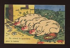 Animals PIGS Belote Card Game Comic Artist early PPC