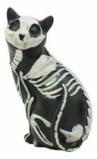 Day of The Dead Bone Skeleton Male Cat Statue Halloween 3d X-ray Decor Figurine