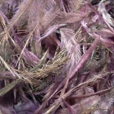 Emu Feathers 5 grams - Dusty Purple