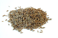 Cumin Seeds Whole (jeera ) Spice 100g Curries Fragrant Loose Highest Grade