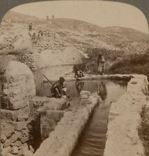 Palestine. Fountain of Elisha, Waters sweetened by the Prophet. Stereoview