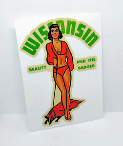 """Vinyl Sticker Michigan /""""Classy Chassis/"""" Pinup Vintage Style Decal"""